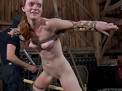 Naughty Hazel lets two studs and two bitches do kinky things to her