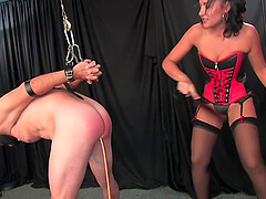 Mistress Haley in lates spanks and pegs her tied up male slave hard