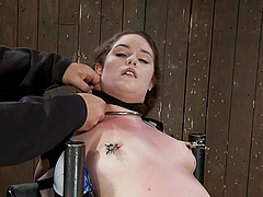 Sexy Charlotte Vale gets bounded and toyed hard