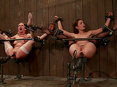 Blonde and brunette get bonded and toyed in their asses
