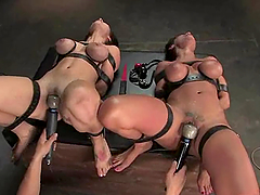 Gorgeous brunette angels are in the BDSM penetration