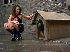 Danny Wylde gets humiliated and tortured by Penny Flame