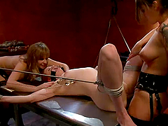 Two bitchy mistresses are humiliating this horny slave