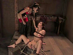 Riley Shy gets bound and humiliated by Sasha Grey in BDSM clip