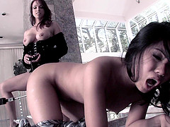 Femdom fetish lesbian getting her pussy fingered then licked