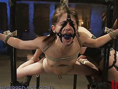 Extreme Lesbian Domination and Torture For a Helpless Babe