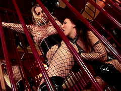 Two mind-blowing ladies having a lesbian session inside the cage