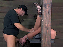 Filthy hooker tied up for the first time and brutally fucked in a threesome