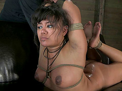 Asian honey tied and forced into sucking his boner off